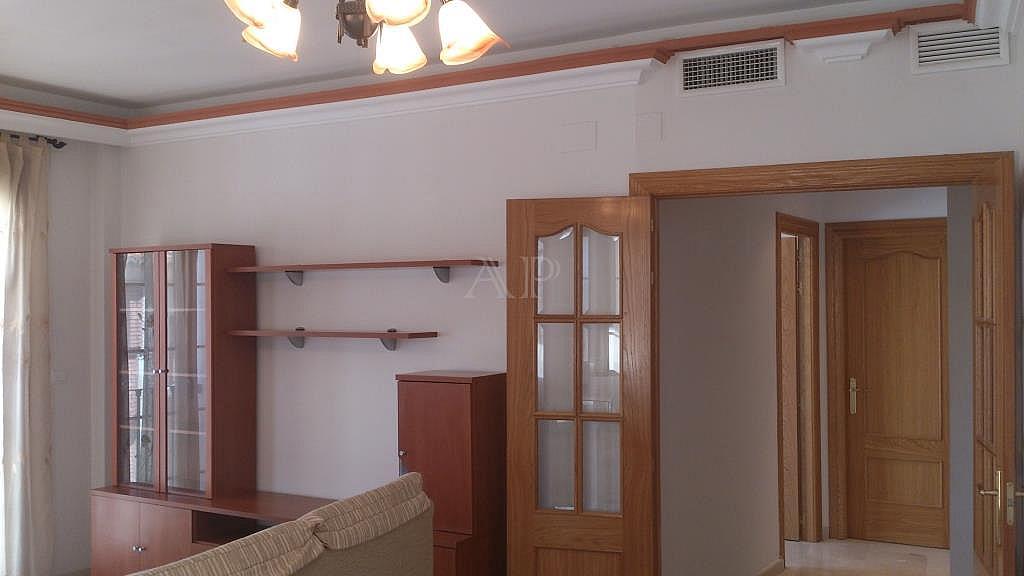 Salón - Piso en alquiler en calle María Zambrano, Guadix - 333127791