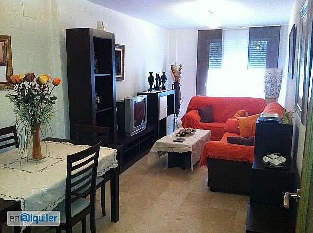 Salón - Piso en alquiler en calle Federico Canonigo Salas, San Juan de Alicante/Sant Joan d´Alacant - 328544935