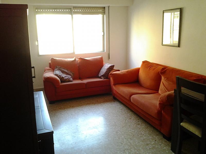 Alquiler de pisos de particulares en la comarca de zaragoza p gina 11 - Pisos alquiler castro urdiales particulares ...