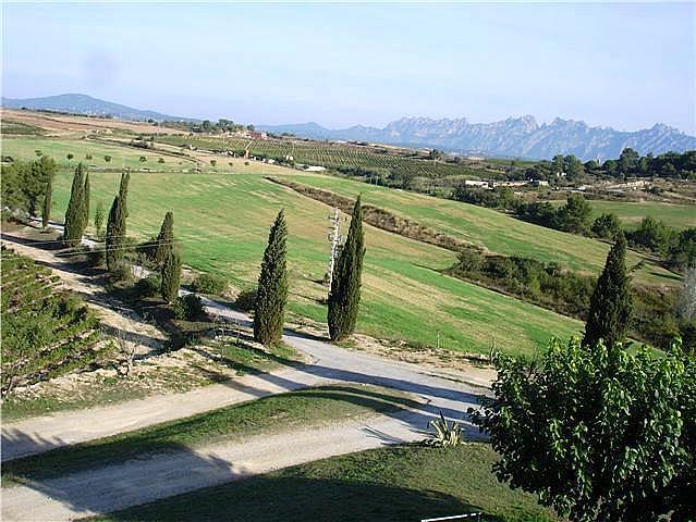 Jardín - Bungalow en alquiler en calle Can Valls, Can Valls en Masquefa - 255017378