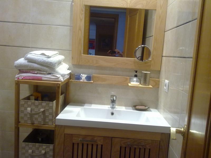 Baño - Apartamento en alquiler de temporada en calle Paseo de la Alameda, Valencia - 120728149