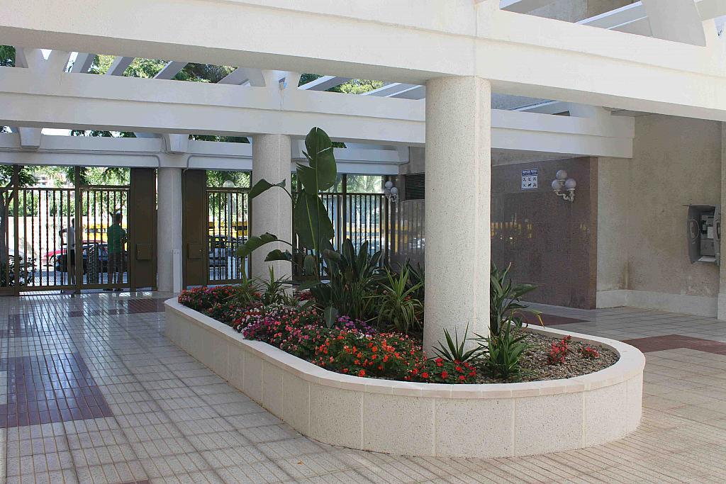 Patio - Estudio en alquiler en calle Carles Buigas, Capellans o acantilados en Salou - 329909466