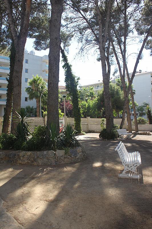 Jardín - Estudio en alquiler en calle Carles Buigas, Capellans o acantilados en Salou - 329909479