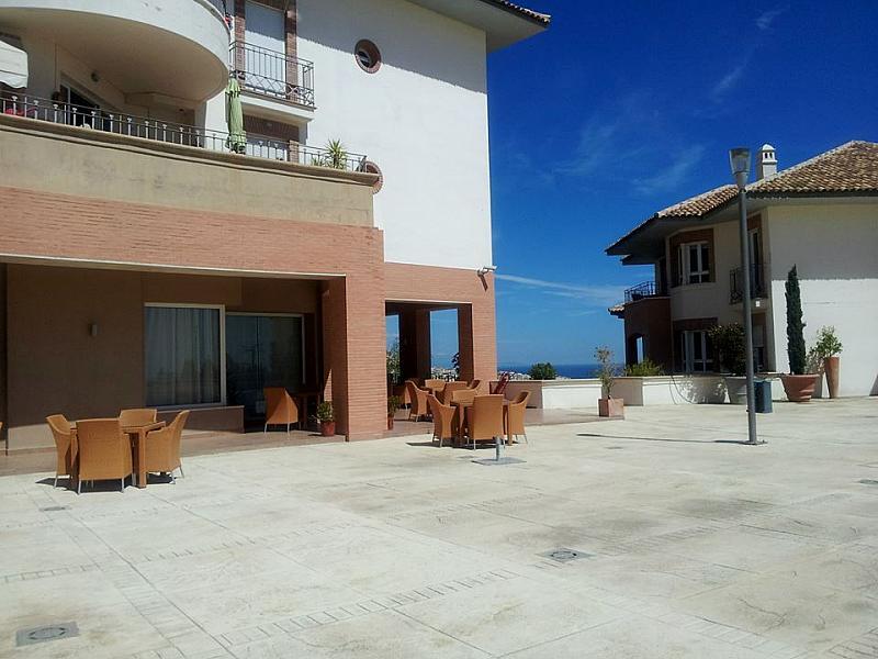 Patio - Apartamento en alquiler en calle Arroyo Hondo, Benalmádena Pueblo en Benalmádena - 137015951