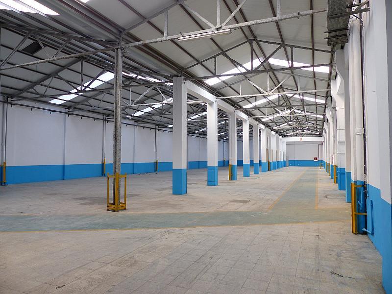 Vistas - Nave industrial en alquiler en calle Marina, Bellvitge en Hospitalet de Llobregat, L´ - 283177473