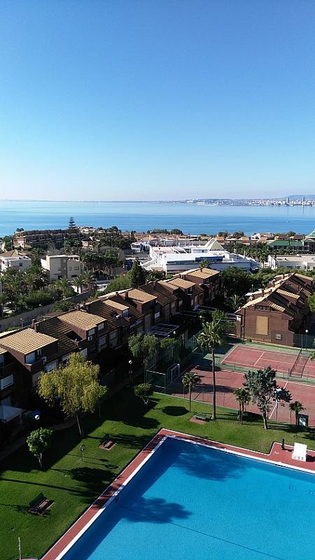 Alquiler de pisos de particulares en la provincia de alicante for Pisos alquiler playa san juan