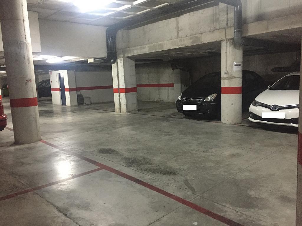 Detalles - Garaje en alquiler en calle L'alguenya, Altabix en Elche/Elx - 303106070