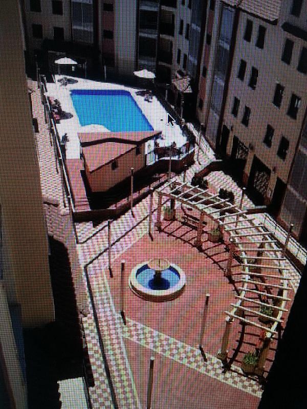 Piscina - Piso a compartir en calle Antoni Gaudí, Centro en Córdoba - 328073718