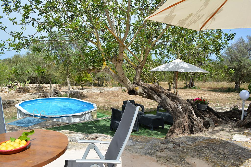 Piscina - Casa rural en alquiler de temporada en calle Diseminado Creu Des Magres, Sant Antoni de Portmany - 312913925