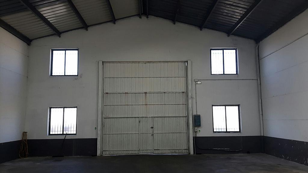 Detalles - Nave industrial en alquiler en calle Rubiera, Villares de la Reina - 316742766