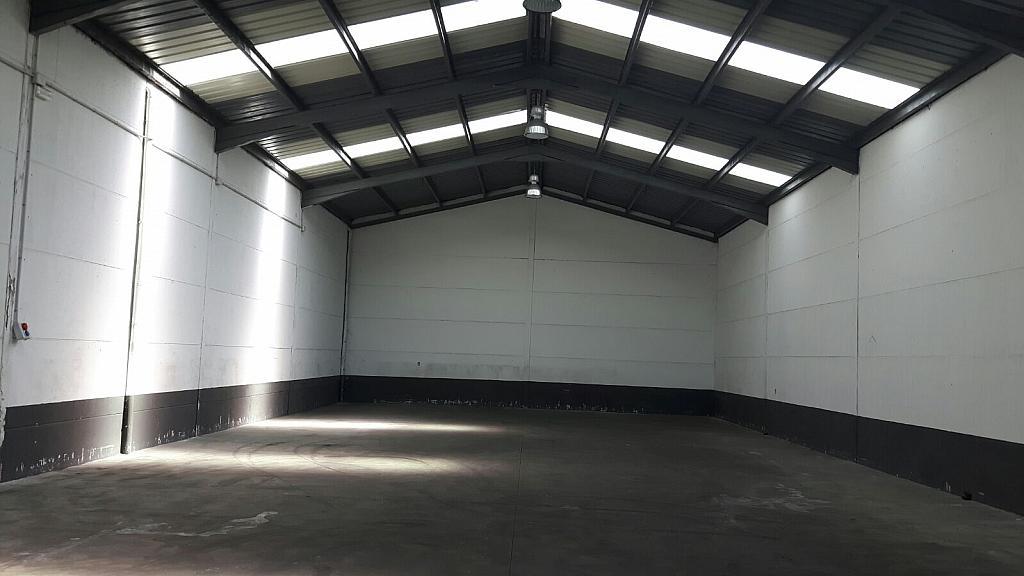 Detalles - Nave industrial en alquiler en calle Rubiera, Villares de la Reina - 316742769