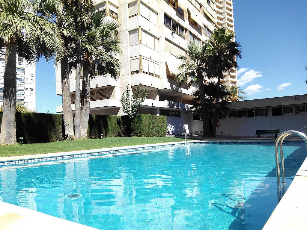 Piscina - Apartamento en alquiler de temporada en calle Marbella, Rincon de loix - 321259836