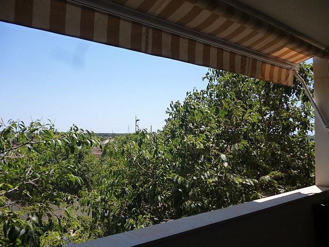 Azotea - Piso en alquiler en calle Beat Josep Castell Camps, Núcleo urbano en Ciutadella de Menorca - 321849444