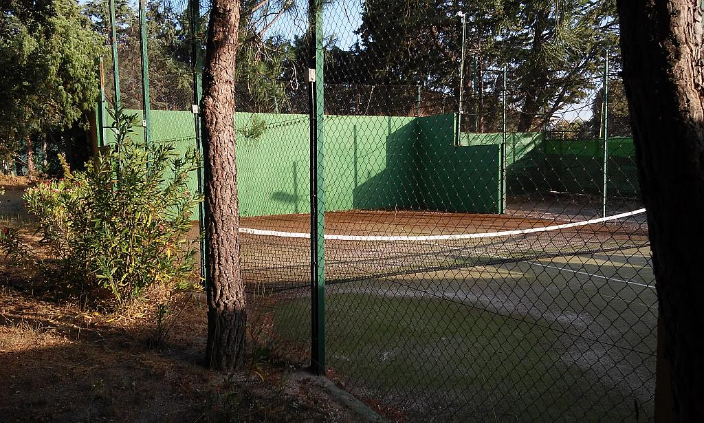 Jardín - Chalet en alquiler en urbanización Cádiz, Valdemorillo - 338886358