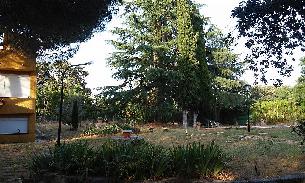 Jardín - Chalet en alquiler en urbanización Cádiz, Valdemorillo - 338886366
