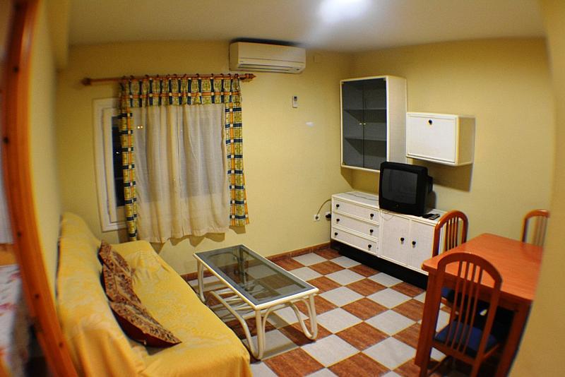 Comedor - Apartamento en alquiler en calle Moli, Flix - 323965413