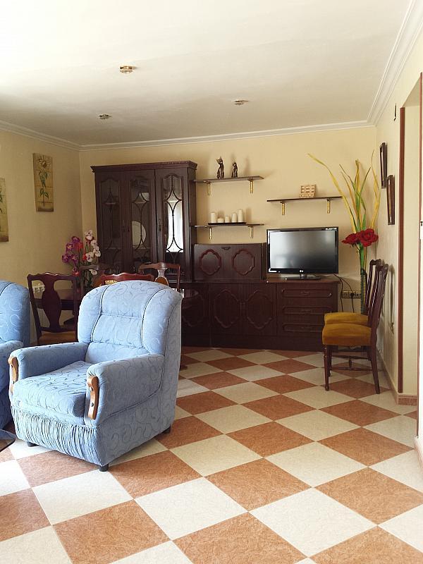 Salón - Apartamento en alquiler en calle Pintor Collado, Garrovilla (La) - 325294416
