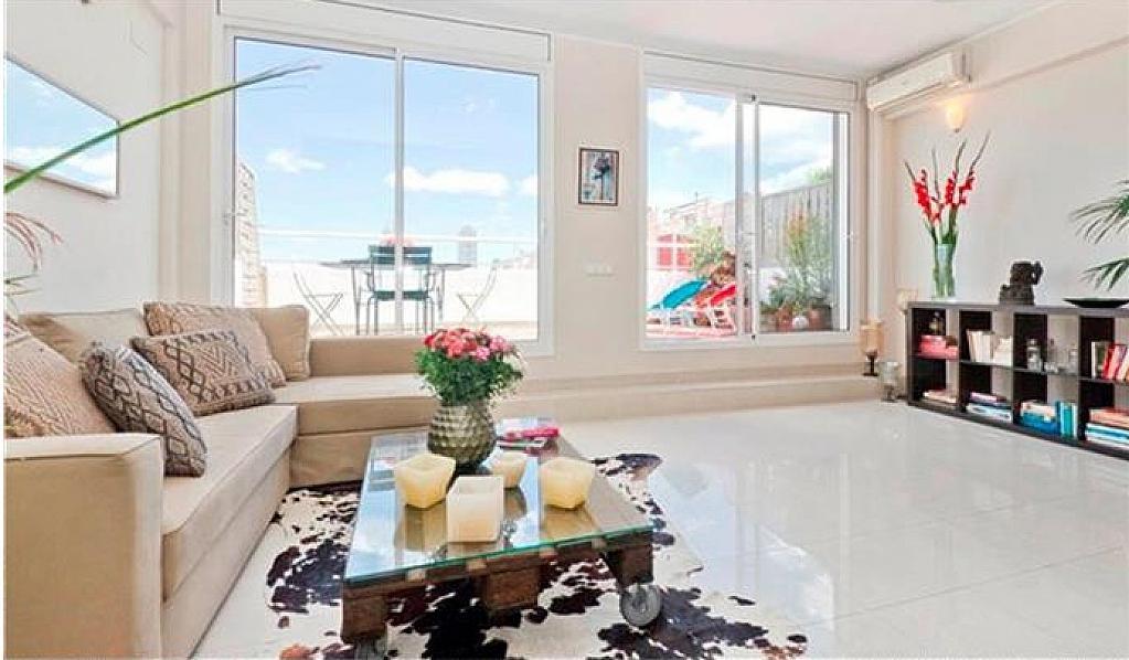 Alquiler de pisos de particulares - Calle marina barcelona ...