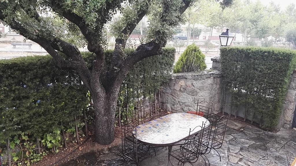 Jardín - Chalet en alquiler en calle San Roque, Colmenar del Arroyo - 329574448