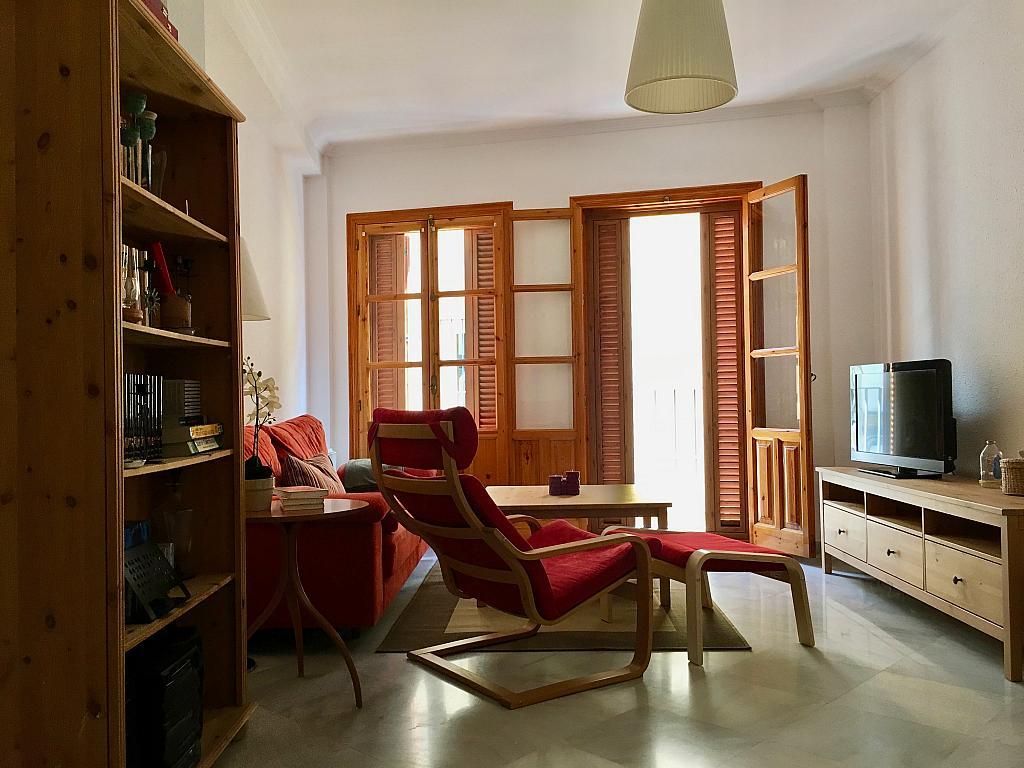 Salón - Apartamento en alquiler en calle Santa Rufina, Feria-Alameda en Sevilla - 330152418