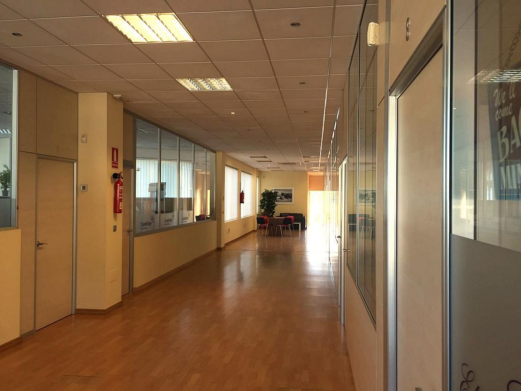 Vestíbulo - Oficina en alquiler en urbanización Andasol, Marbella Este en Marbella - 331626058