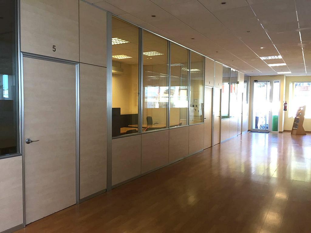 Vestíbulo - Oficina en alquiler en urbanización Andasol, Marbella Este en Marbella - 331626072
