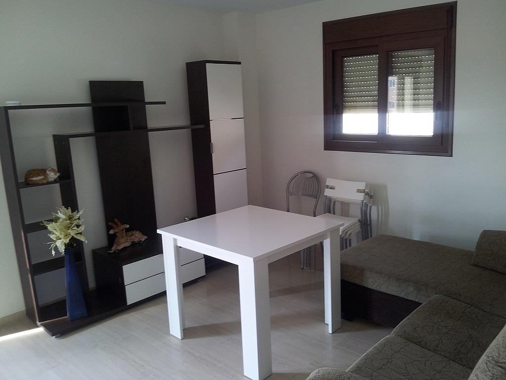 Comedor - Apartamento en alquiler en calle Carvajal, Carvajal en Fuengirola - 339118219