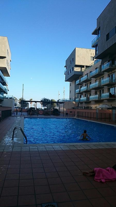 Piscina - Apartamento en alquiler en calle Mar Jónica, Progrés-Pep Ventura en Badalona - 349747450
