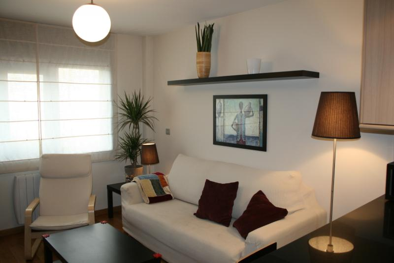 Salón - Piso en alquiler en calle Mugardos, Ares - 117787225