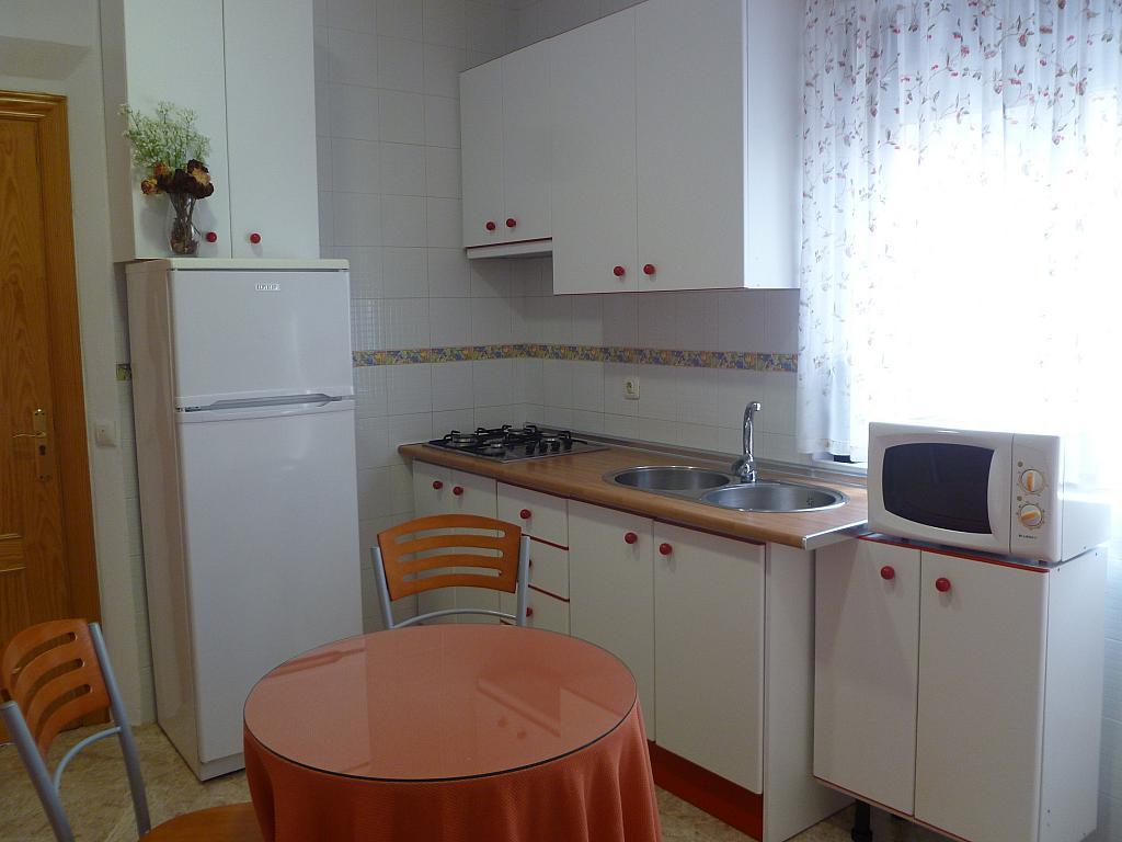 Comedor - Estudio en alquiler en calle Camino de la Zubia, Zaidín en Granada - 313879766
