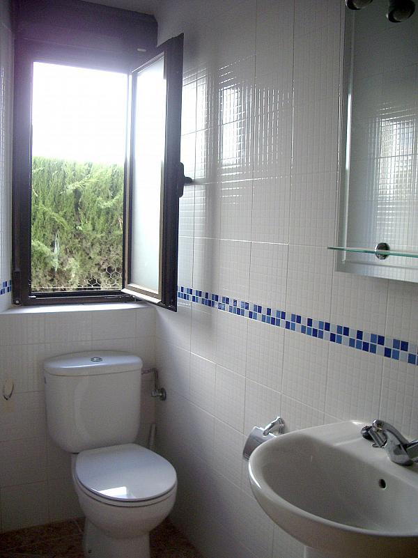 Baño - Estudio en alquiler en calle Camino de la Zubia, Zaidín en Granada - 313879941