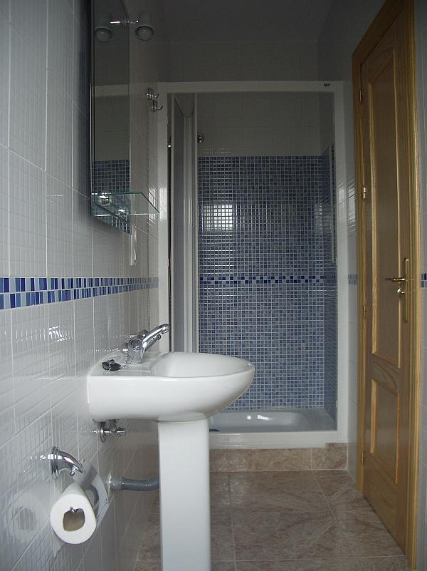 Baño - Estudio en alquiler en calle Camino de la Zubia, Zaidín en Granada - 313879996
