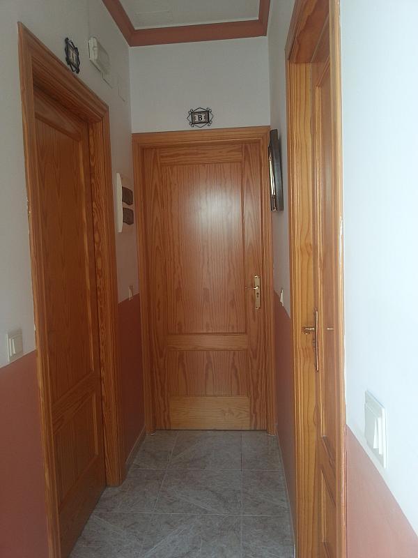 Pasillo - Estudio en alquiler en calle Camino de la Zubia, Zaidín en Granada - 313880034