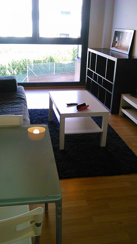Salón - Apartamento en alquiler en calle Baron Adzaneta, Ramales de la Victoria - 331017668
