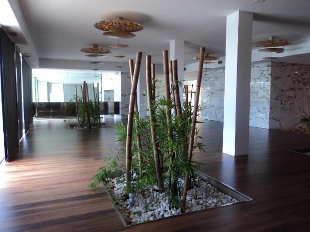 Vestíbulo - Apartamento en alquiler de temporada en calle Herrerieta, Getaria - 331622599