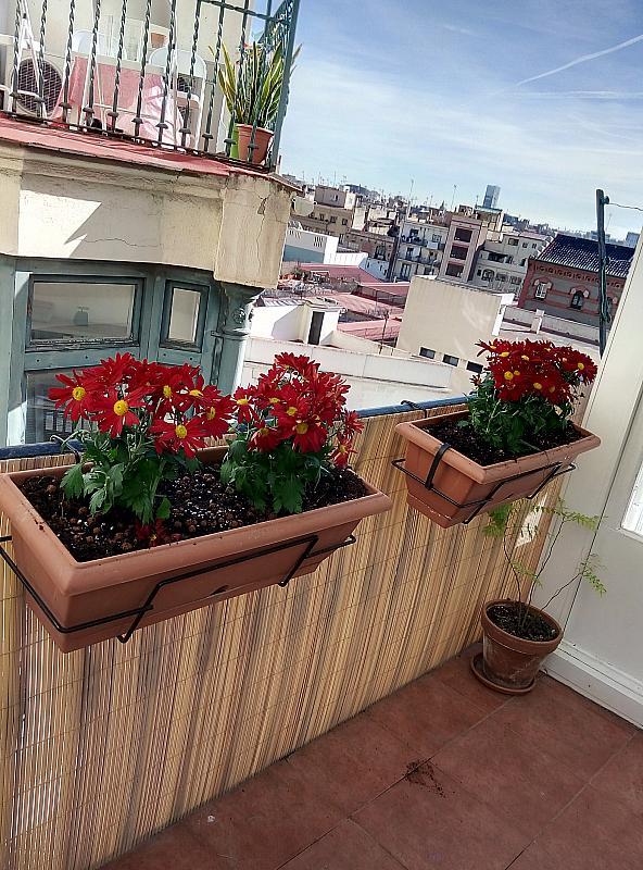 Terraza - Piso en alquiler en calle Jonqueres, Born-Santa Caterina-Sant Pere-La Ribera en Barcelona - 347929196