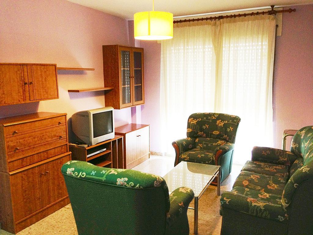 Salón - Piso en alquiler en plaza Poeta Juan Boscan, Norte en Granada - 300510456