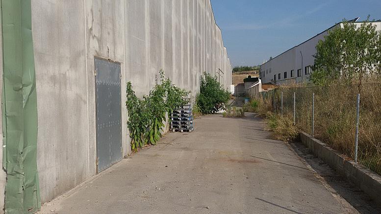 Detalles - Nave industrial en alquiler en calle Pedregar, Montmeló - 332023818
