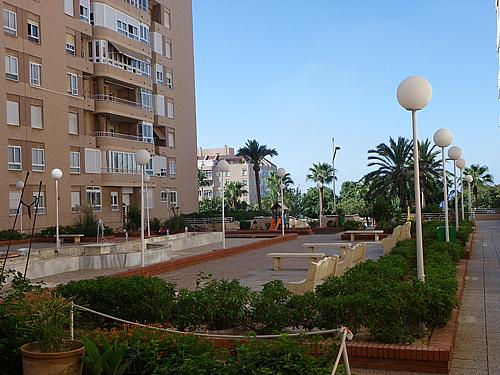 Jardín - Piso a compartir en calle Cabo de Gata, Ciudad Jardin en Almería - 194594832