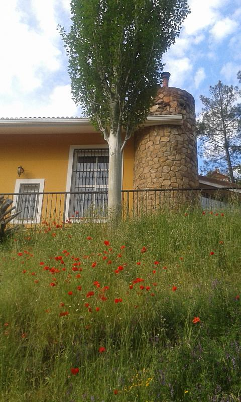 Jardín - Casa rural en alquiler en calle Río, Robledo de Chavela - 300957521