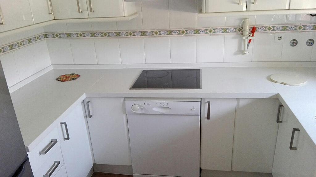 Cocina - Apartamento en alquiler de temporada en calle Octavio Augusto, Sancti Petri en Chiclana de la Frontera - 330139368