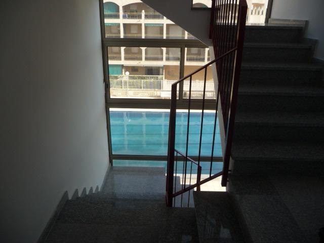 Detalles - Piso en alquiler en calle Amadeo Vives, Pineda, La - 105721086