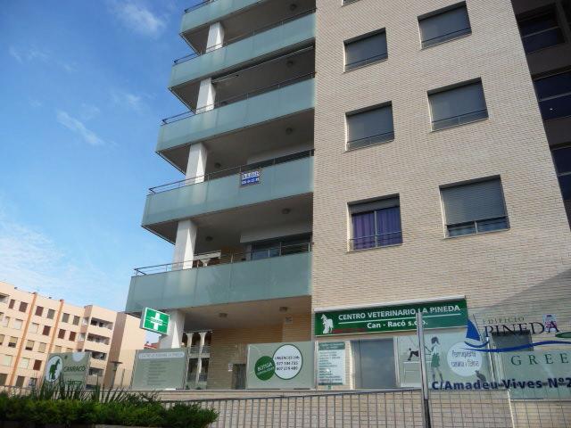 Fachada - Piso en alquiler en calle Amadeo Vives, Pineda, La - 105721090