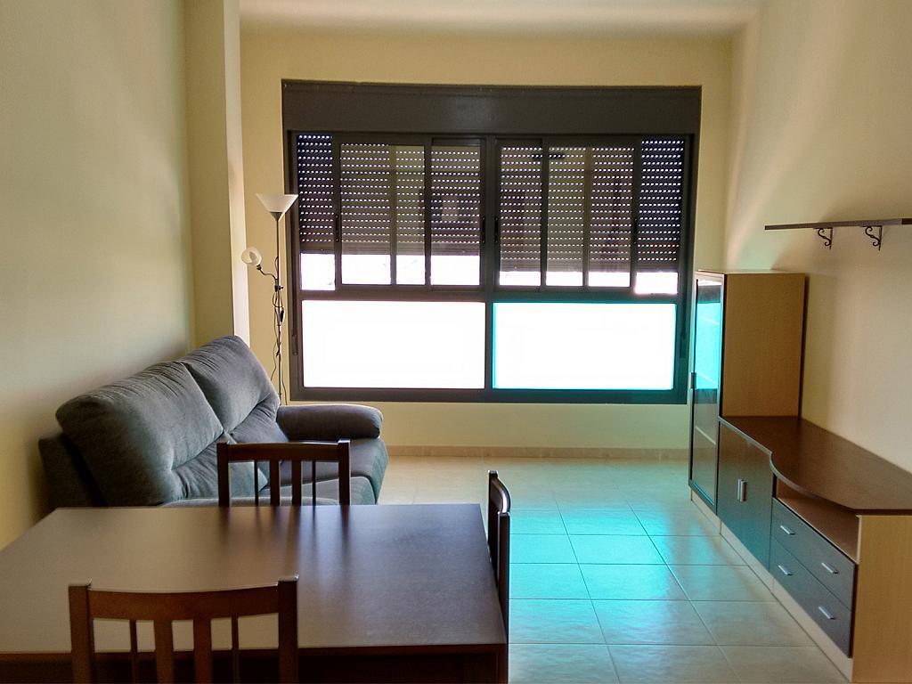 Piso en alquiler en calle Rio Jabalón, Sur en Castellón de la Plana/Castelló de la Plana - 199897904