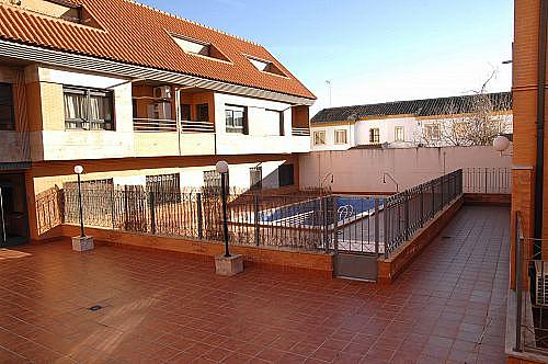 Estudio en alquiler en calle Carmen, Ciudad Real - 350703782