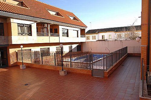 Apartamento en alquiler en calle Carmen, Ciudad Real - 350703119