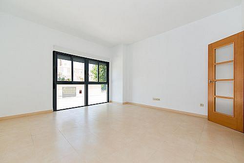 Piso en alquiler en calle Ruperto Chapi, El Fondo de les Neus-El Hondon de las Nieves - 290254655