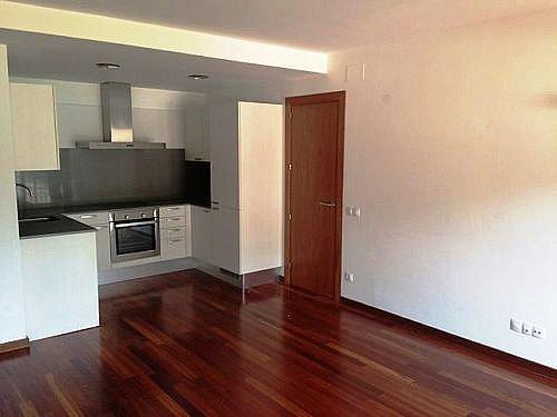 Dúplex en alquiler en calle Pompeu Fabra, Sant Pau de Seguries - 297543249